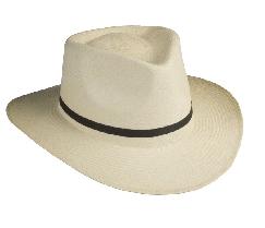 85aff73e70 Sombrero con tinte natural caballero comprar en Merida