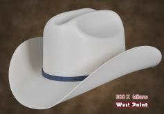 Sombrero comprar en San Francisco del Rincon 38a03c8ab5c