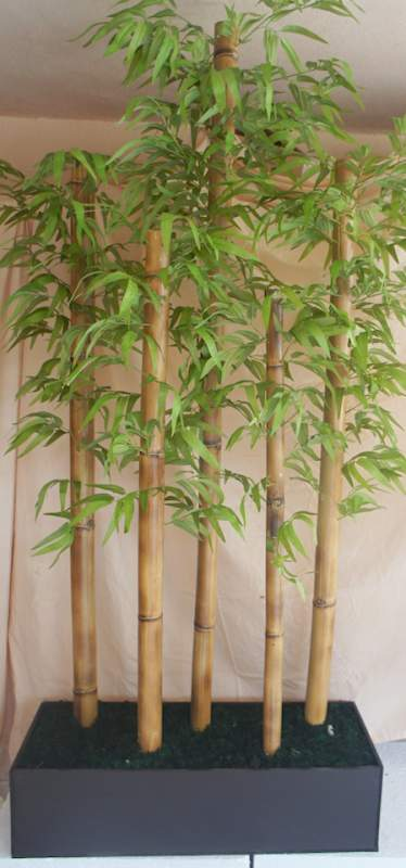 Jardinera Bamboo comprar en Monterrey