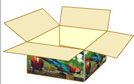 Comprar Cajas de carón en color