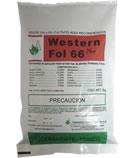 Comprar Western Fol 66 Plus