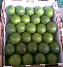 Comprar Seedless Persian Lime