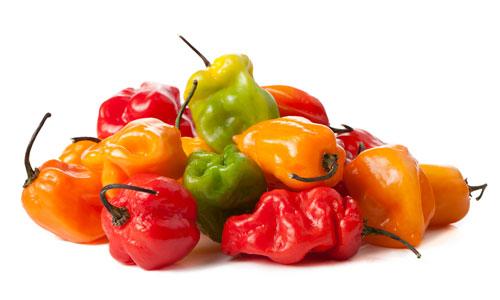 Comprar Habanero pepper