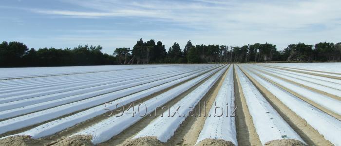 Comprar Acolchado Plastico Agricola