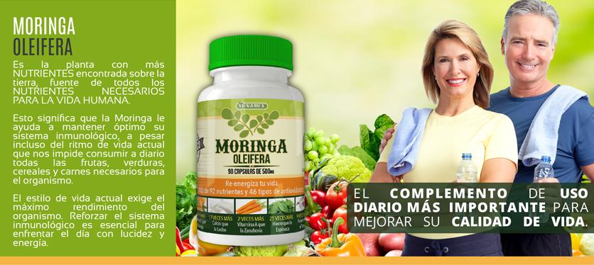Comprar Moringa Oleifera en Cápsulas