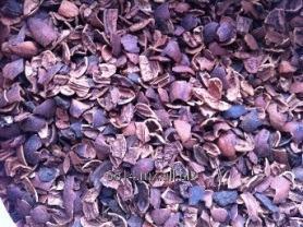Comprar Cascara de Nuez (Carya illinoinensis)