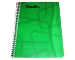 Cuadernos escolares.