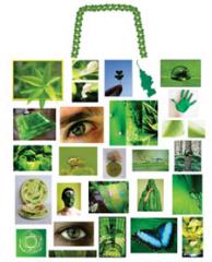 Sacks, packs, plastic bags according to