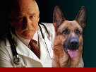 Vaseline veterinary