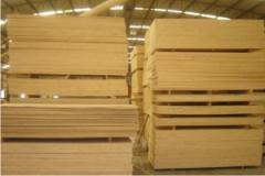 Plywood made of softwood