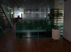 Glass for interior