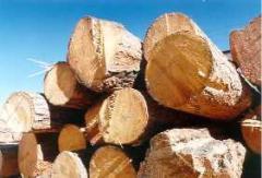 Billets, ingots wooden industrial