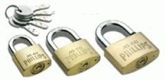 Garage locks