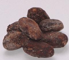 Granos de cacao fermentado
