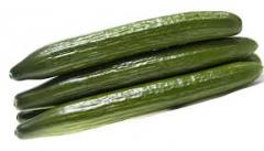 Pepino frances