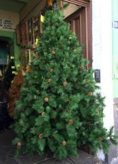 Arbol de navidad brigthon