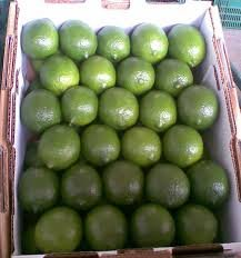 Seedless Persian Lime