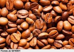 Cafe verde cafe tostado cafe en grano