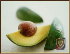 Hass Avocado Fresh