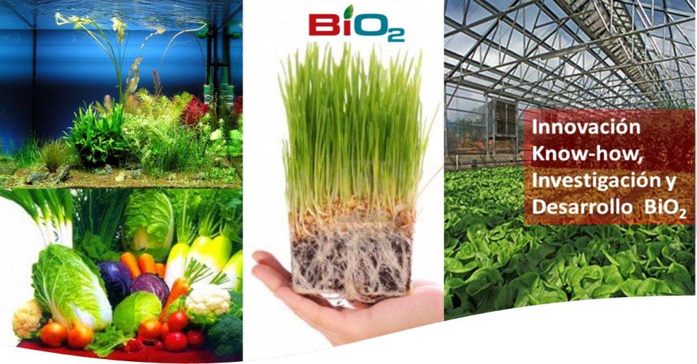 anti_estresante_organico_bio2_vital_y_oxigenador
