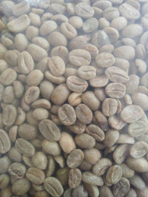 cafes_naturales_y_lavados