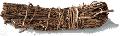 Smilax officinale   Common Names  Sarsaparrilla