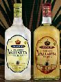 Tequila Puerto Vallarta