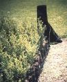 Rollos antihierba RN-400