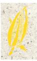 Papel de maíz