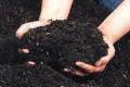 Fertilizantes organicos