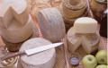 Bases para quesos