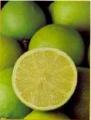 Limón mexicano