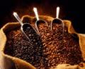 Café Gourmet en Grano