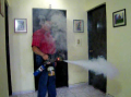 Termonebulizador y nebulizador Mini Smart Fogger
