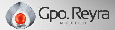 Grupo Reyra Mexico, S.de R.L., Tlalnepantla