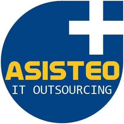 Asisteo IT Outsourcing, Empresa, México