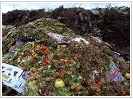 Pedido Recoleccion de desperdicios