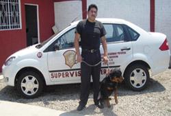 Pedido Servicios de perros guardianes