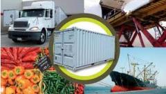 Consultoría y asesoría en logística