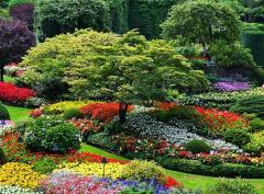 Servicio de decoración de jardines