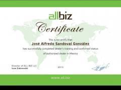 Representación Comercial de All Biz en México