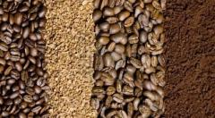 CAFE EN GRANO GOURMET
